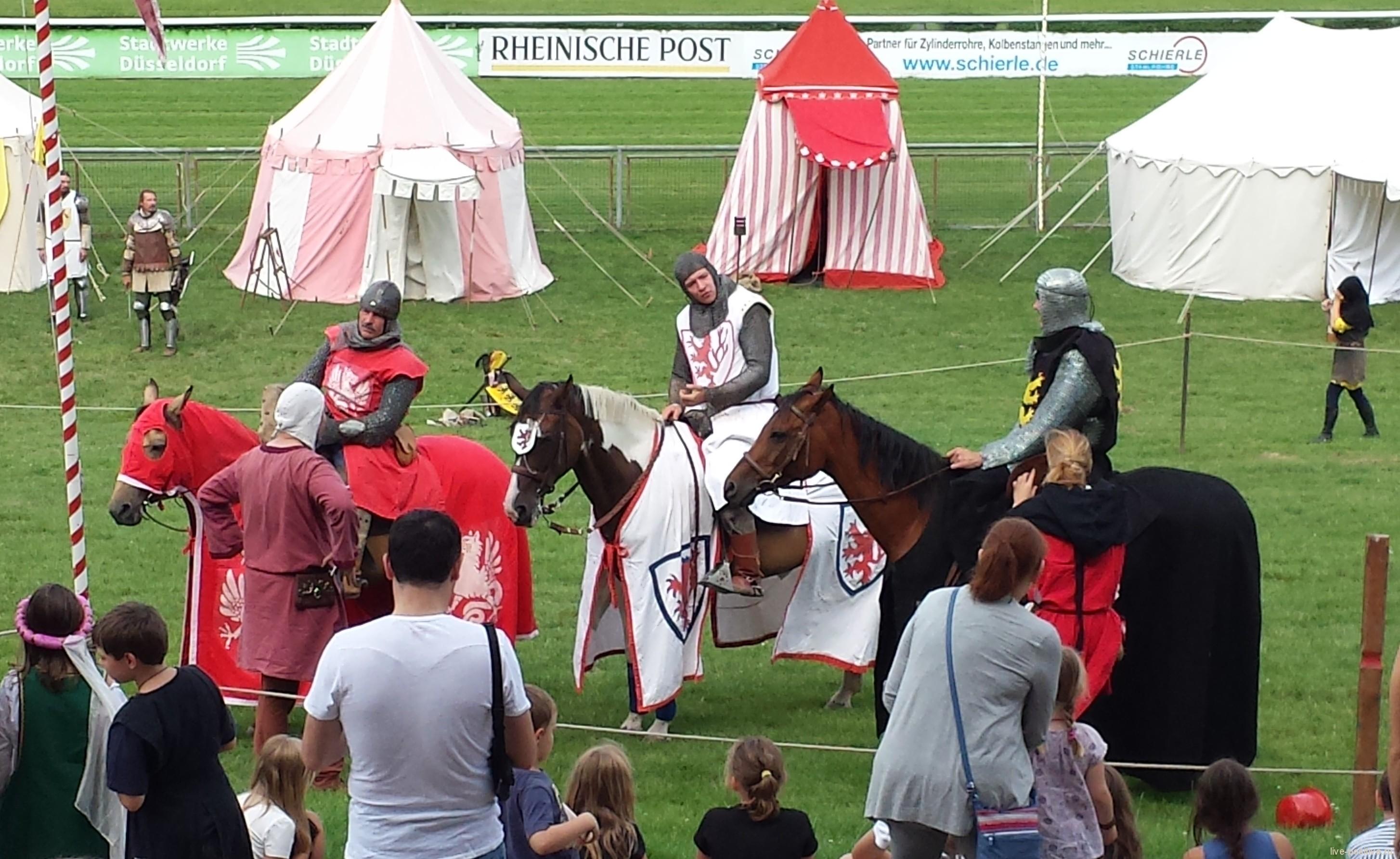 Средневековый фестиваль 3